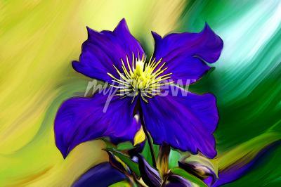 Papiers peints Nadmorski Kwiat