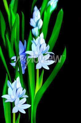 Papiers peints Lazurowe Kwiaty