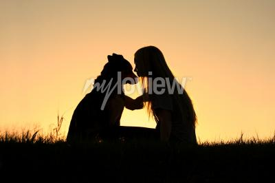 Image Allemand, berger, chien, silhouetted, contre, coucher soleil, ciel