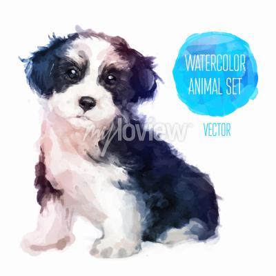 Posters Illustration aquarelle peinte à la main pour chien