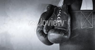 Papiers peints Boxing gloves