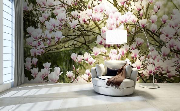 Papier peint magnolia dans le jardin