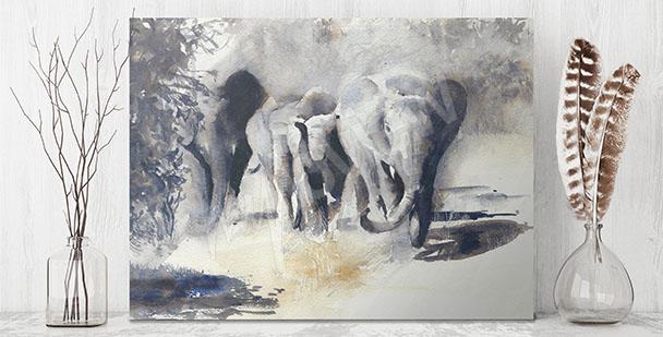 Image animaux d'Afrique