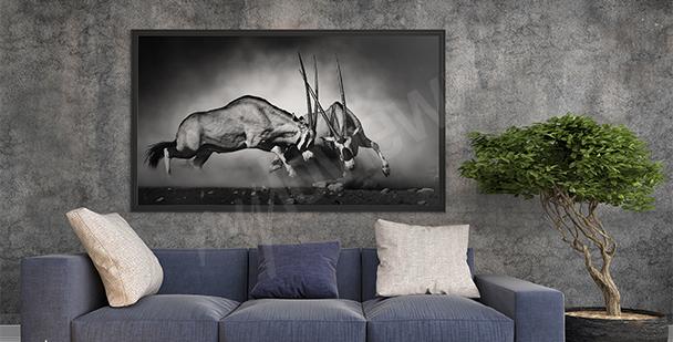 Images Catgories  Animaux  Peintures Murales  MyloviewFr