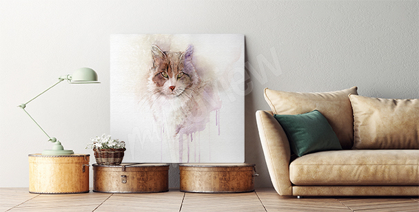Image avec chat roux