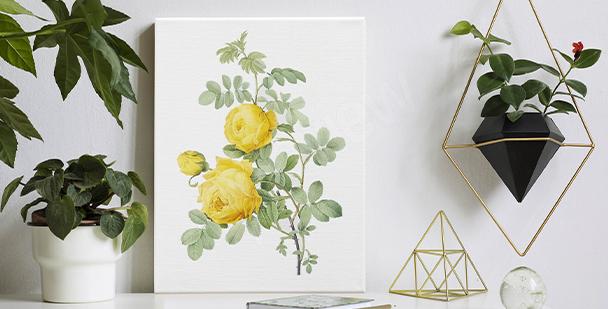 Image avec un accent floral
