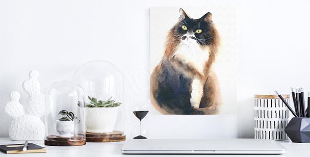Image chat pelucheux