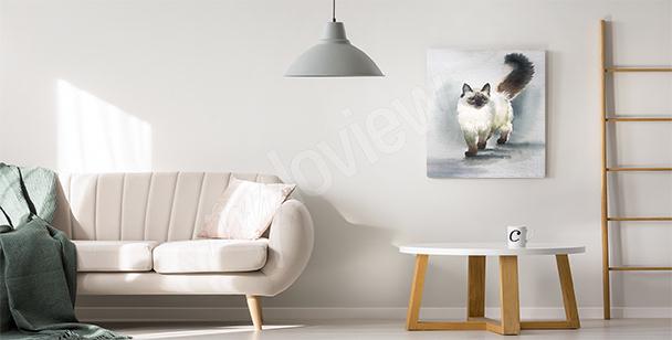 Image chat pour salon