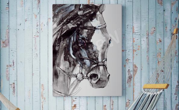 Image cheval portrait