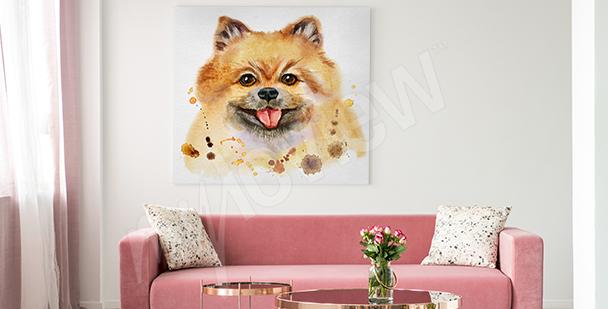 Image de chiens chambre d'adolescent