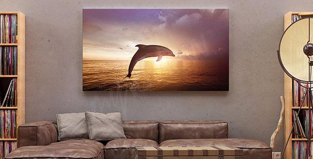 Image dauphin et coucher du soleil