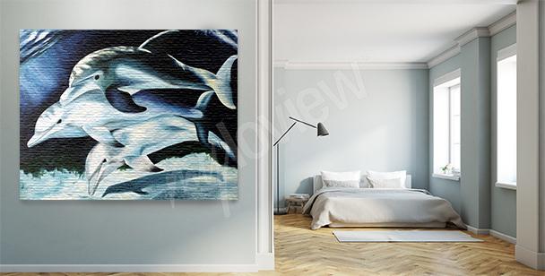 Image dauphins la nuit