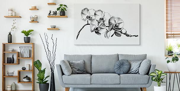 Image fleurs en noir et blanc