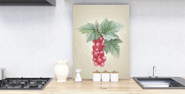 Image fruits pour cuisine