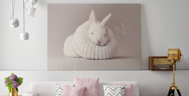 Image lapin blanc pour salon