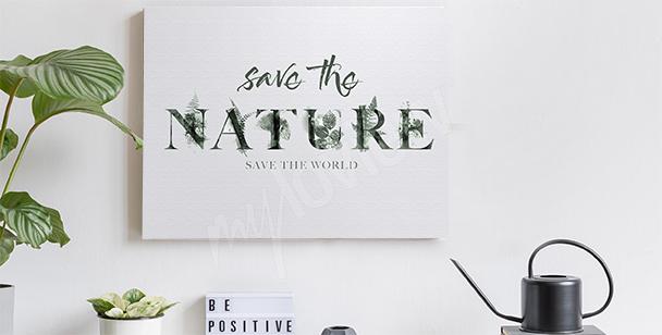Image motif nature