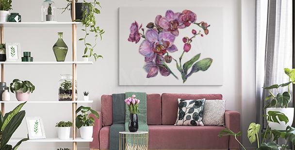 Image orchidée violette