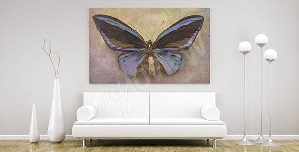 Image papillon minimaliste