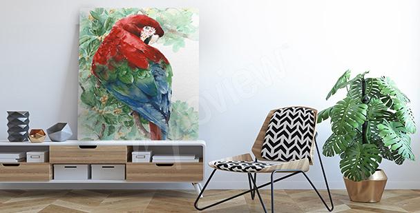 Image perroquet coloré