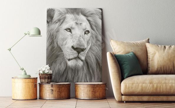 Image portrait de lion en noir et blanc
