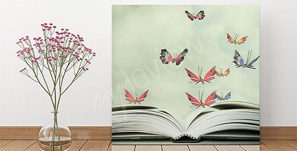 Image pour entrée papillons