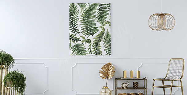 Image pour salon feuilles de fougère