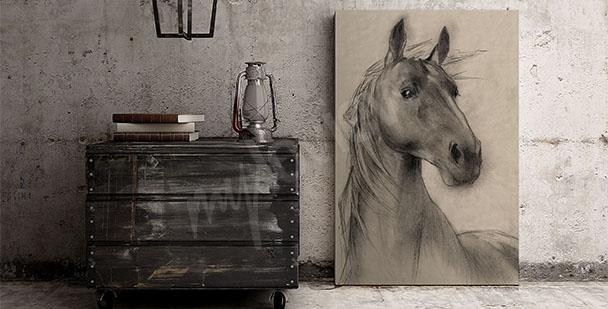 Image tête de cheval