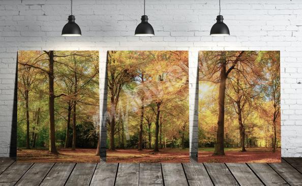 Image tryptique avec un paysage de forêt