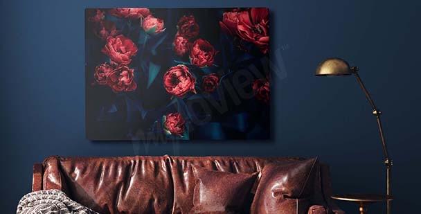 Image tulipes rouges dans la pénombre
