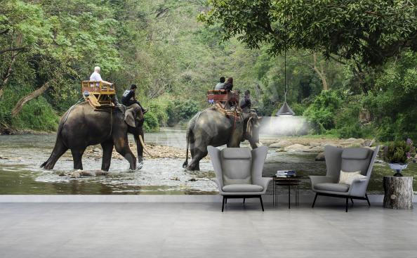 Papier peint animaux éléphant