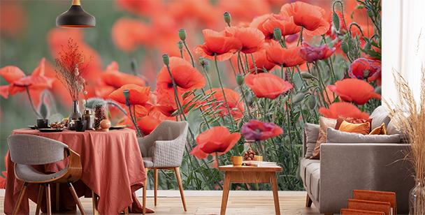Papier peint avec des fleurs rouges