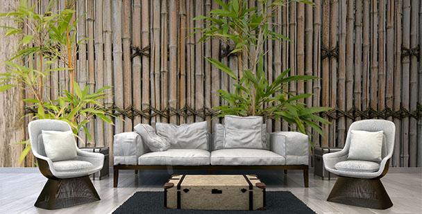 Papier peint bambou pour salon
