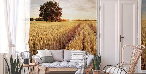 Papier peint champ de blé