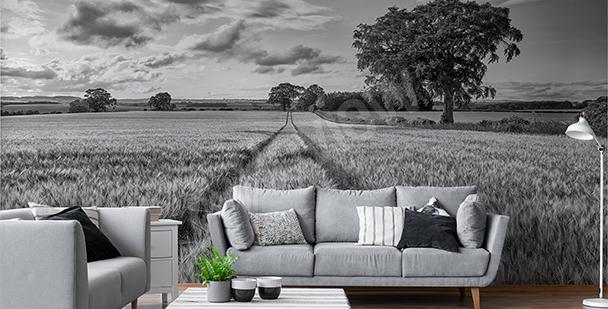 Papier peint champ en noir et blanc