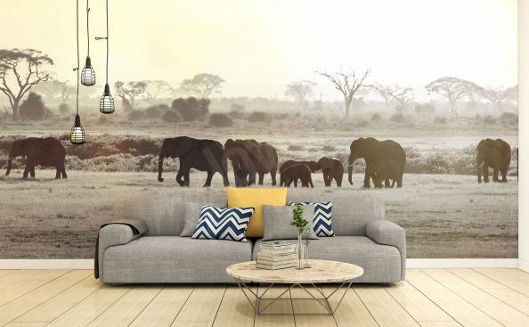 Papier peint éléphants d'Afrique