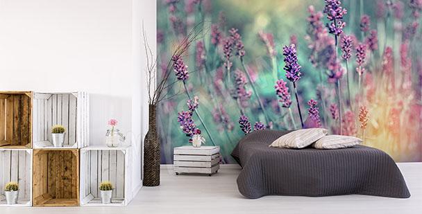 Papier peint fleurs de lavande