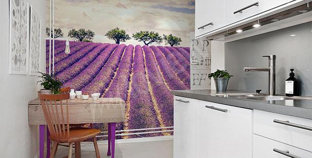 Papier peint lavande la cuisine