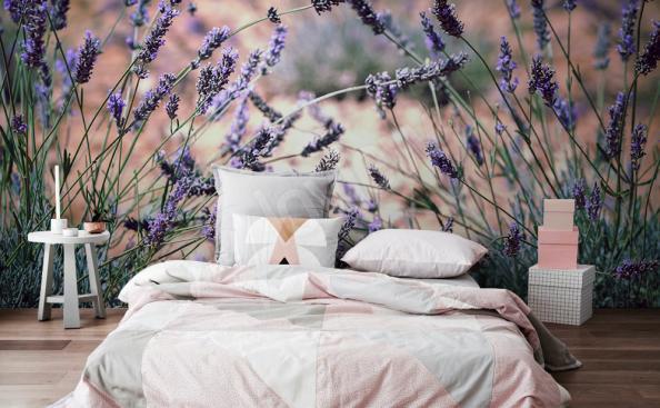 papier peint lavande pour la chambre à coucher