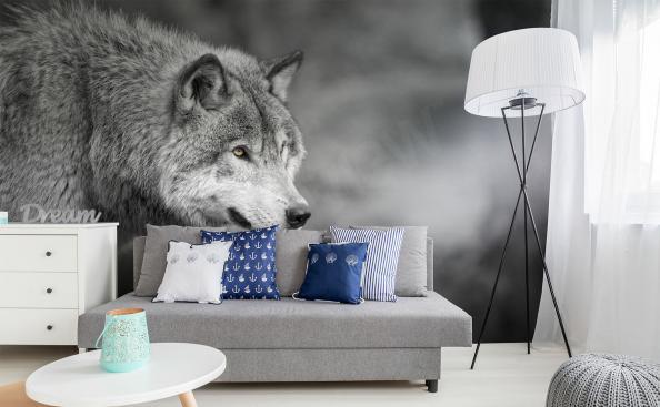 Papier peint loup en gris