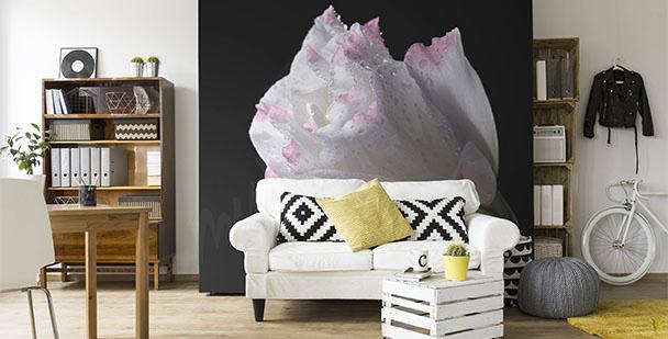 Papier peint minimaliste rose