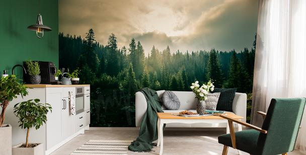 Papier peint nature et forêt