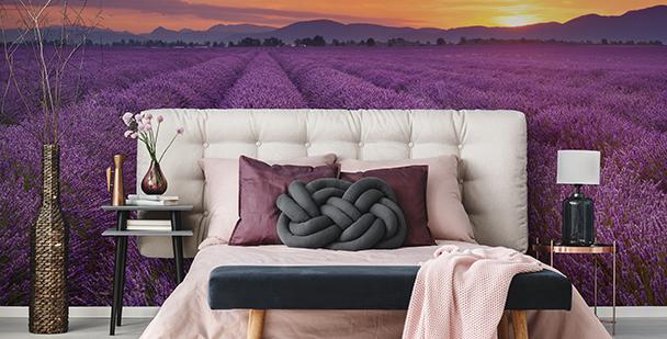 Papier peint panorama de Provence