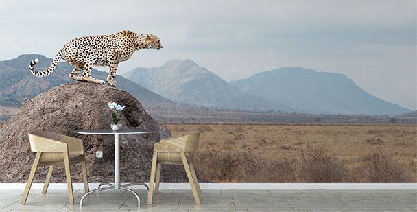Papier peint parc national Kenya