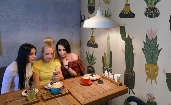 Papier peint pour restaurants cactus