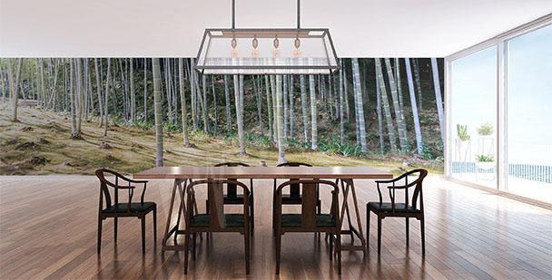 Papier peint pour salle à manger
