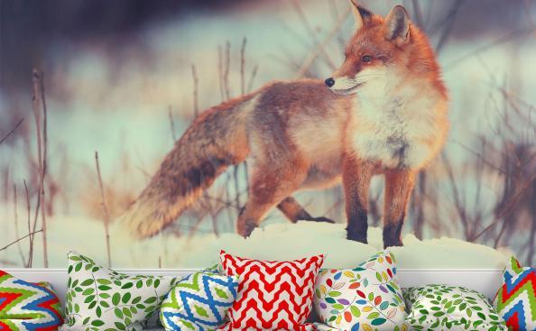 Papier peint renard roux