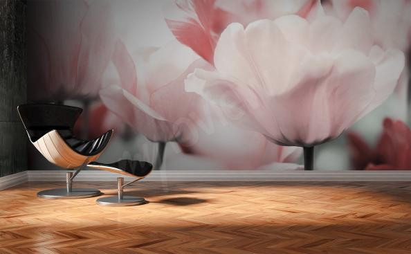 papier peint têtes de tulipes