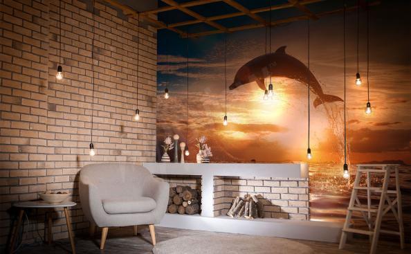 Papiers peints dauphin et coucher de soleil