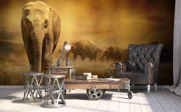 Papiers peints Éléphants d'Afrique