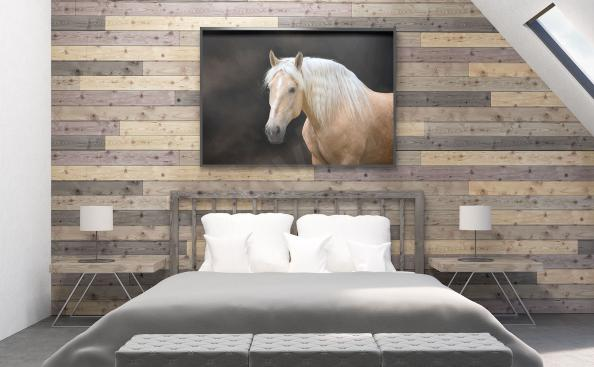 Poster blanc cheval